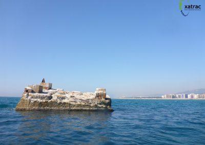 La Pilona de Malgrat de Mar. Història, futur i característiques ecològiques d'un sistema natural aïllat. (TFG)