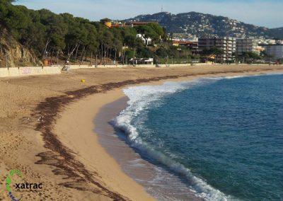 Estudi de la qualitat integrada de les platges del litoral català.