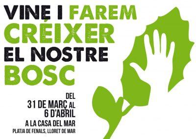 Projecte de restauració del bosc de Fenals a través de campanya de voluntariat i jornades de divulgació a la població.