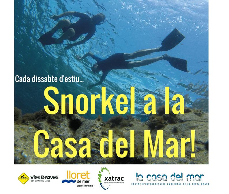 Snorkel els dissabtes!