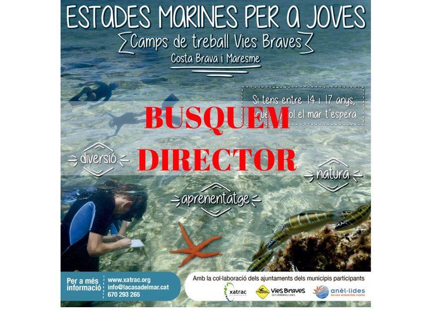 BUSQUEM DIRECTOR DE LLEURE!!