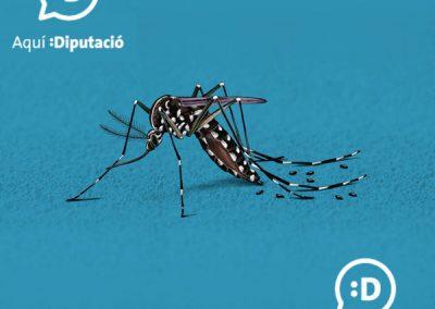 """""""El mosquit tigre a ratlla"""". Programa de prevenció i control del mosquit tigre. Diputació de Tarragona"""