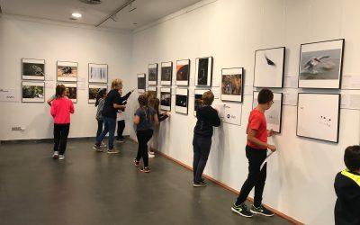 "Montphoto ""Imatges que inspiren"" 2018"
