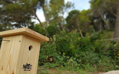 Activitat per a famílies: L'enigma del bosc